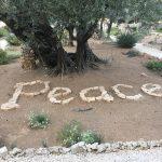 garden-of-gethsemane-garden-peace
